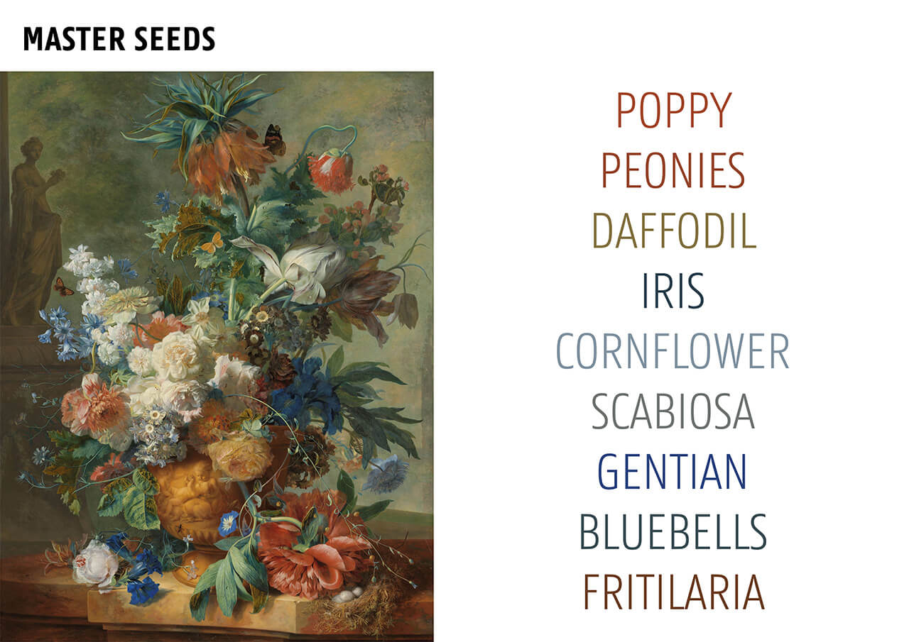 seeds according to old paintings